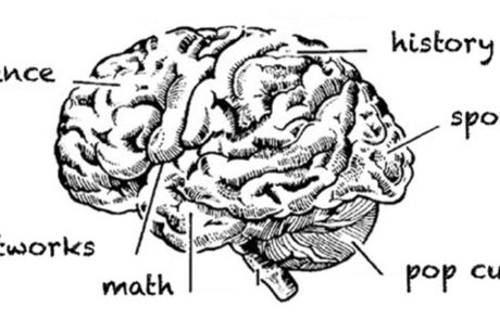 brain-trivia-night-image